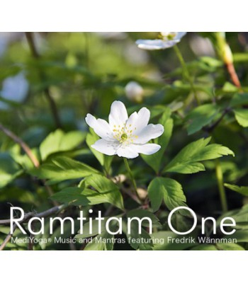 Ramtitam One